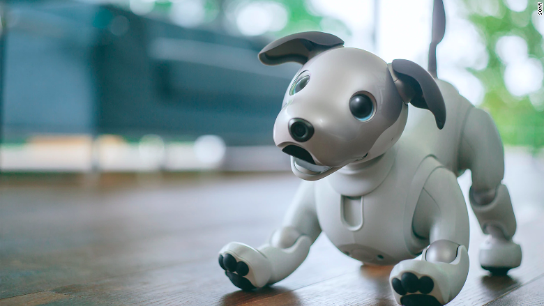 Sony's Aibo robot dog is ready to play